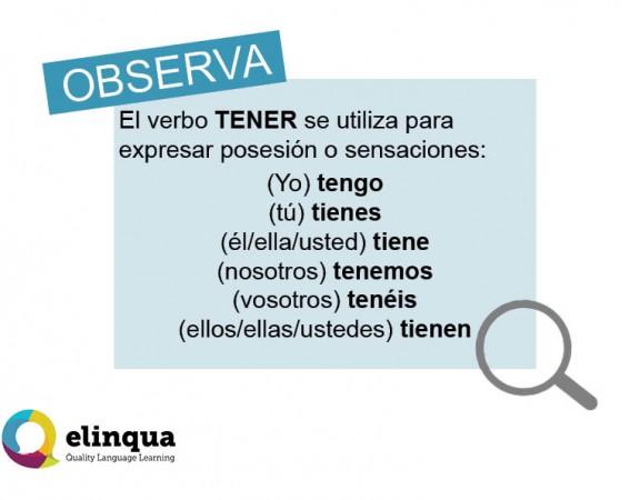 Verbo-TENER_Presente